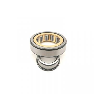 American Roller CC 156 Cylindrical Roller Bearings