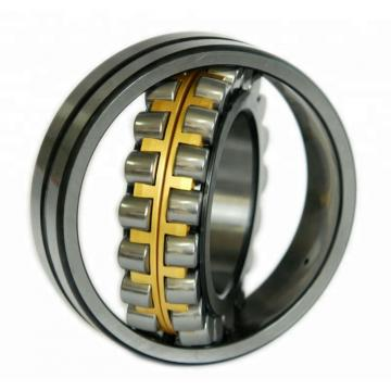 85 mm x 180 mm x 41 mm  FAG N317-E-M1 Cylindrical Roller Bearings