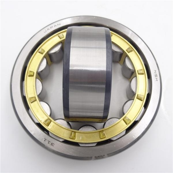 FAG NUP2313-E-M1-C3 Cylindrical Roller Bearings #2 image