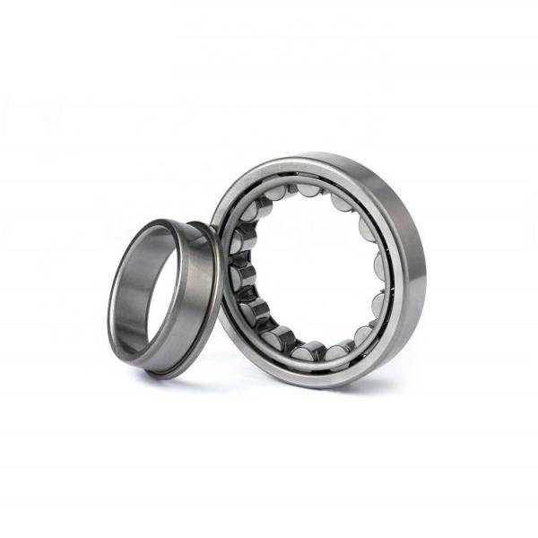 FAG NUP2313-E-M1-C3 Cylindrical Roller Bearings #1 image