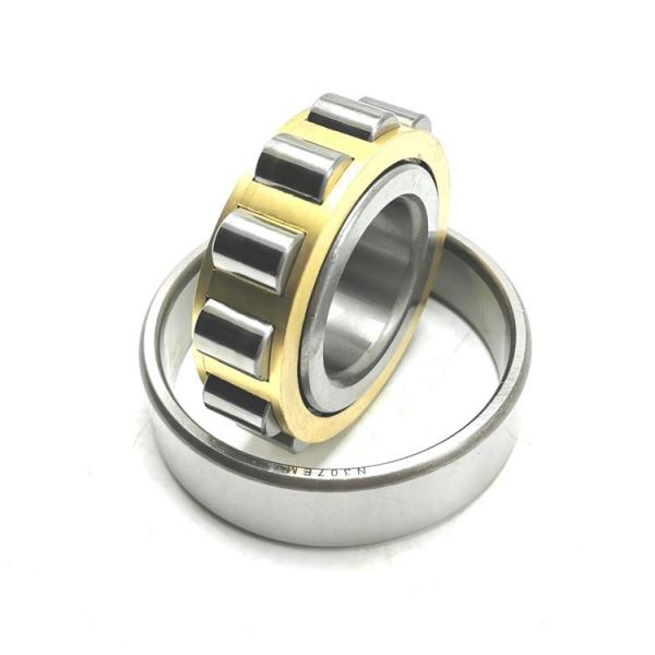 FAG NU2305-E-M1A Cylindrical Roller Bearings #1 image