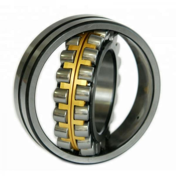 FAG NU1022-M1A-P5-S1-C4 Cylindrical Roller Bearings #1 image